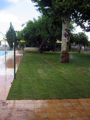 azuljardines.com_cesped_Tablada_club_suboficiales_5