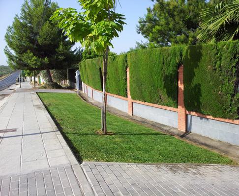 azuljardines.com_diseño_instalacion_jardines_DPalomares_2