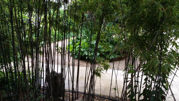 azuljardines.com_mantenimiento_periodico_jardin_Asunta_10