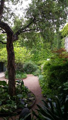 azuljardines.com_mantenimiento_periodico_jardin_Asunta_11