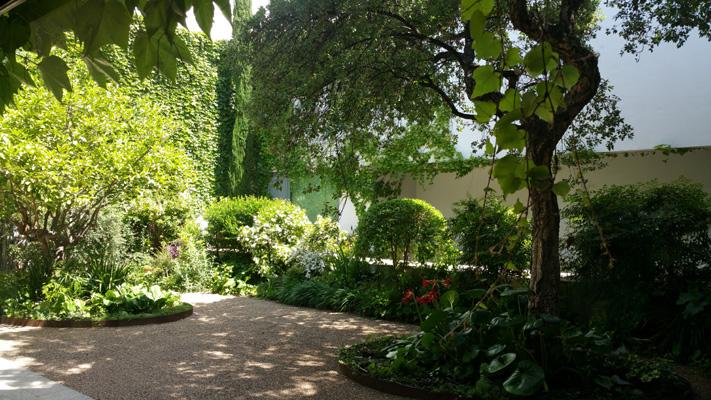 azuljardines.com_mantenimiento_periodico_jardin_Asunta_12