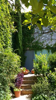 azuljardines.com_mantenimiento_periodico_jardin_Asunta_14