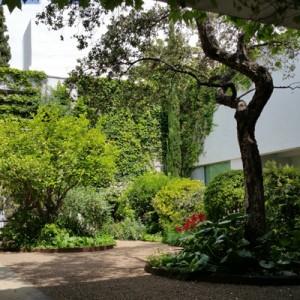 Mantenimiento periódico de jardín particular