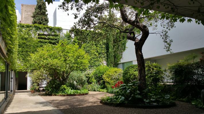 azuljardines.com_mantenimiento_periodico_jardin_Asunta_16