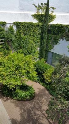 azuljardines.com_mantenimiento_periodico_jardin_Asunta_17