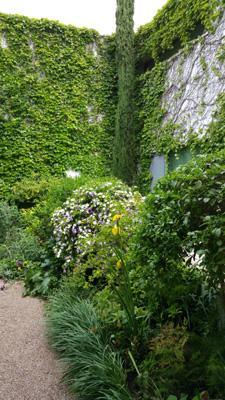 azuljardines.com_mantenimiento_periodico_jardin_Asunta_4