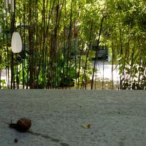 azuljardines.com_mantenimiento_periodico_jardin_Asunta_7