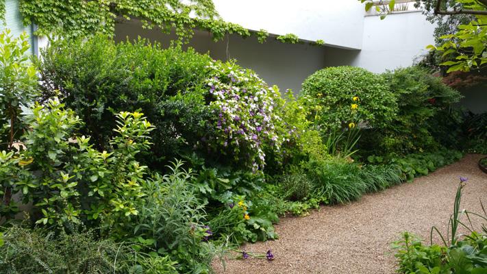 azuljardines.com_mantenimiento_periodico_jardin_Asunta_8