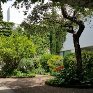 azuljardines.com_mantenimiento periodico_jardines_3