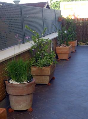 azuljardines.com_diseño_instalacion_jardines_particular_MLuisa_1