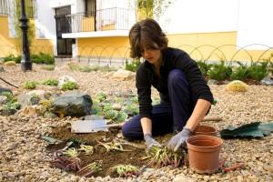 azuljardines.com_diseño_jardines_trabajando
