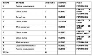 azuljardines.com_informes-tecnicos_reaccionpodas