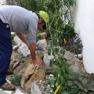 azuljardines.com_mantenimiento periodico_trabajando