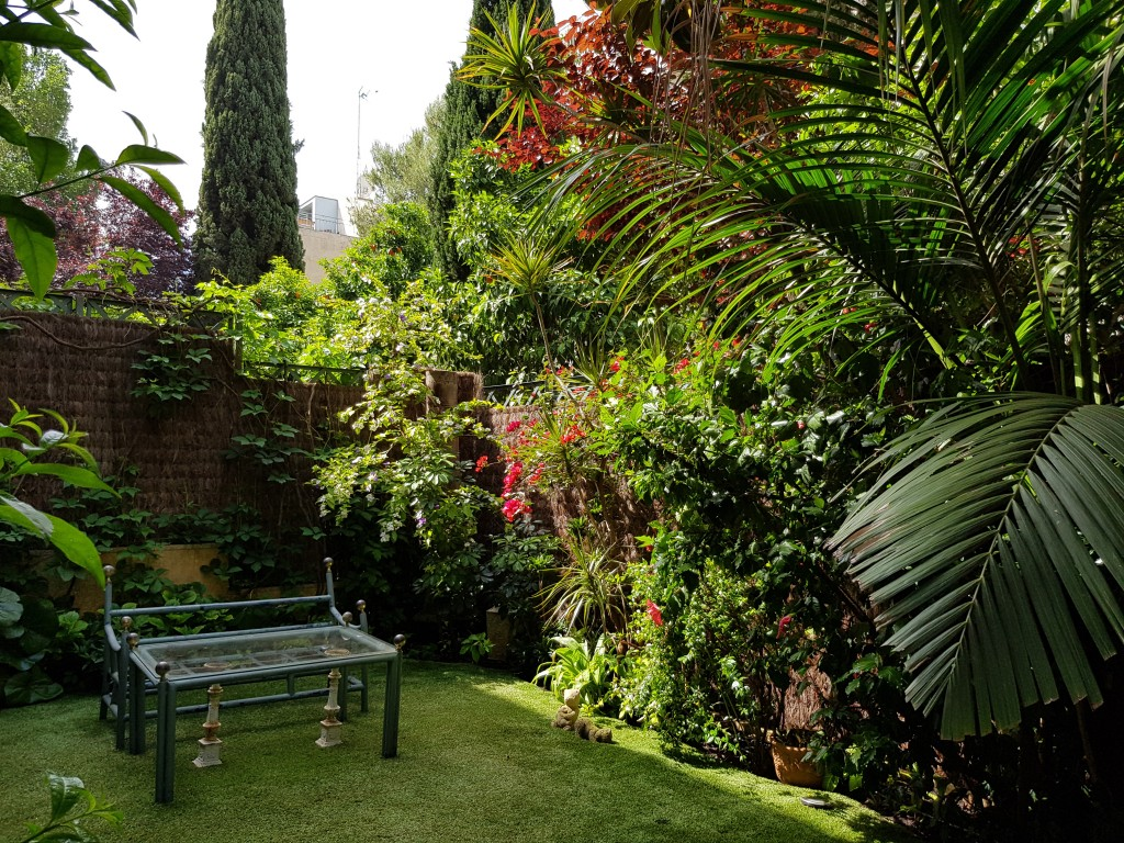 azuljardines.com_mantenimientos-puntuales_jardin-2
