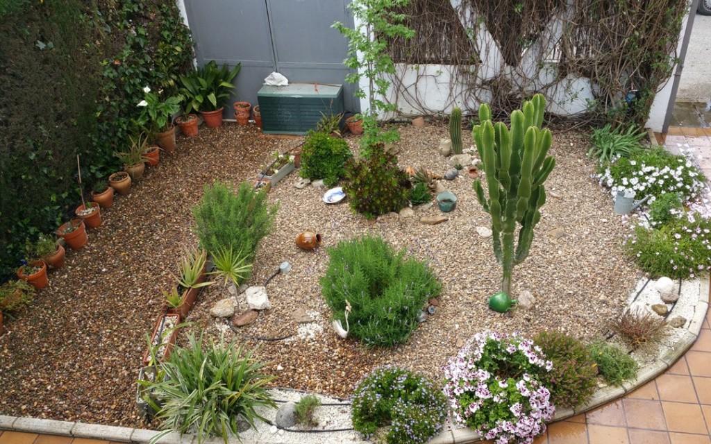 azuljardines.com_mantenimientos puntuales_jardin