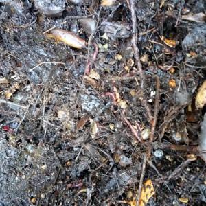 azuljardines.com_suministro material ecológico_compostaje