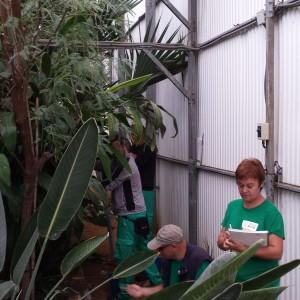 curso jardinería ecológia para REDES en el Alamillo