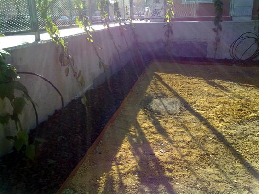 azuljardines.com_diseño_instalacion_jardines_residencia_Geron_1