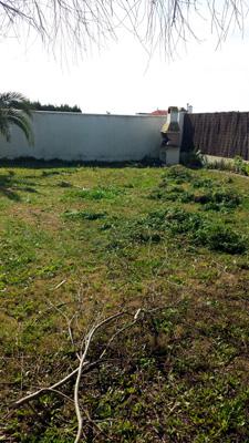 azuljardines.com_mantenimiento_periodico_El Palmar_5