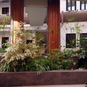 Diseño e instalación de jardines y mantenimiento periódico de los patios y zonas ajardinadas del complejo de Tempa Museo