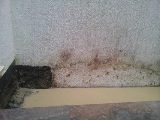 azuljardines.com_mantenimiento_periodico_Tempa_Museo_7