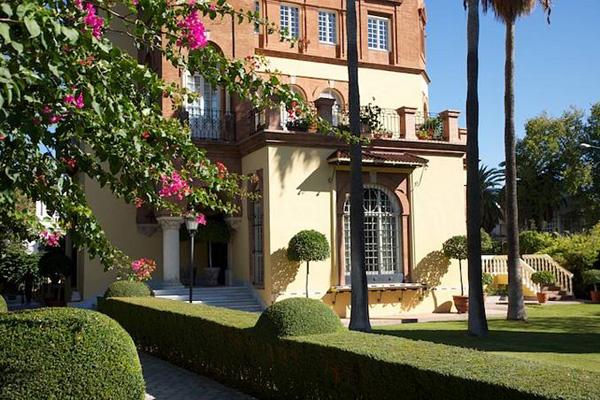azuljardines.com_mantenimiento_periodico_jardin_Palmera_1