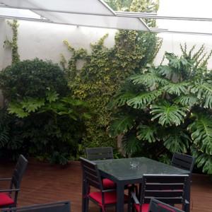 Diseño e instalación de jardines y mantenimiento periódico de la terraza del Restaurante Ezcaray de Sevilla