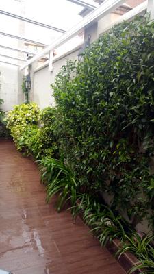 azuljardines.com_mantenimiento_periodico_terraza_restaurante_Ezcary_5