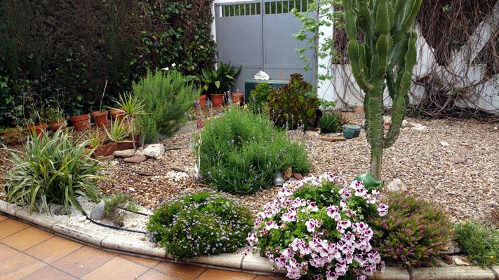 azuljardines.com_mantenimiento_puntual_jardin_Ang_2