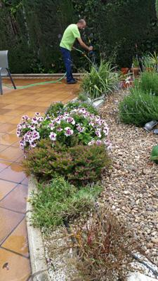 azuljardines.com_mantenimiento_puntual_jardin_Ang_3