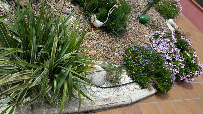 azuljardines.com_mantenimiento_puntual_jardin_Ang_5