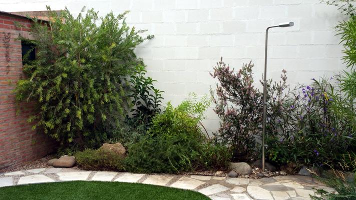 azuljardines.com_mantenimiento_puntual_jardin_Pil_3