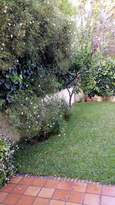 azuljardines.com_mantenimiento_puntual_jardin_Yol_2
