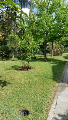 azuljardines.com_mantenimiento_santa_clara_10