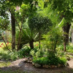 Mantenimiento de los jardines y zonas verdes de la Comunidad de Propietarios Santa Clara 2, fase 1