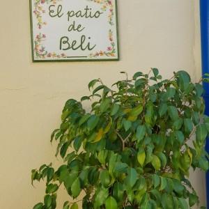 El sueño de Beli… un colegio con huerto escolar, más jardines y zonas verdes