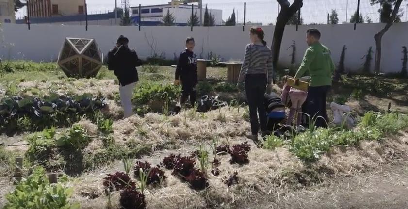 132   Fuera de cuadro  o cómo construir cinco jardines singulares en cinco colegios de Sevilla   YouTube