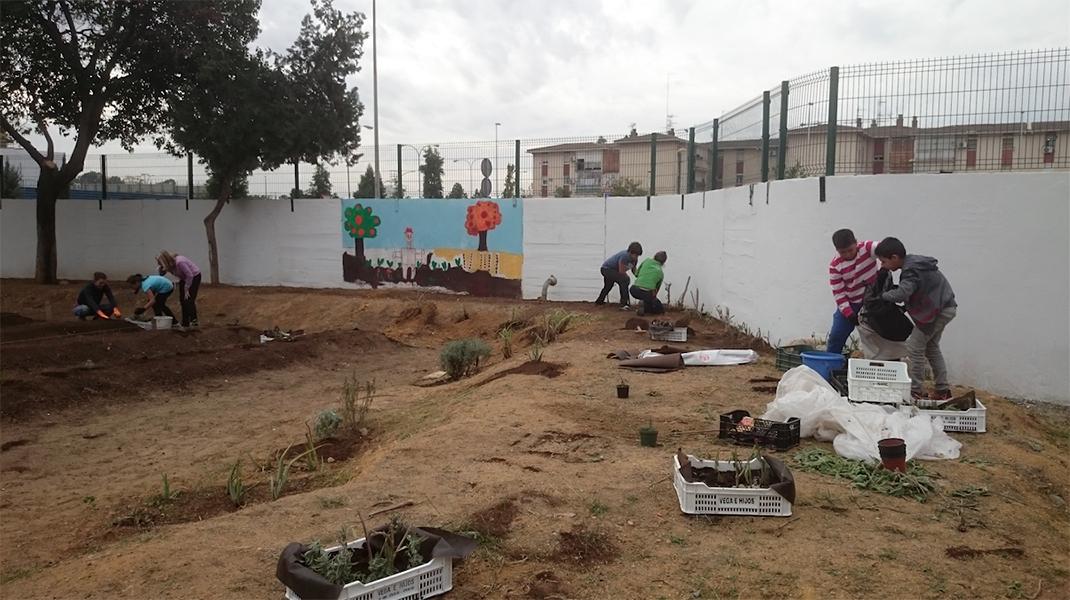 AzulJardines_educacionambiental_CEIPAndalucia_huertoescolar_trabajando-2