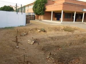 azuljardines.com_educacionambiental_antes-de-la-intervención-2