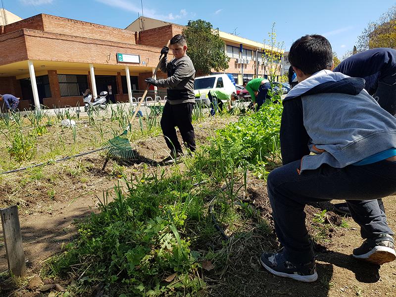 azuljardines.com_educacionambiental_conciencia-ecológica-escolares