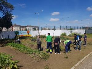 azuljardines.com_educacionambiental_huertos-escolares_2