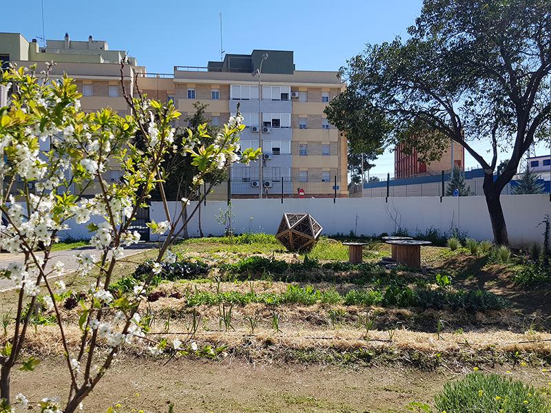 azuljardines.com_educacionambiental_patios-colegios-1