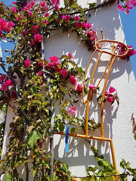 azuljardines.com_diseño-e-instalacion-jardines_Gerona-mantenimiento_1