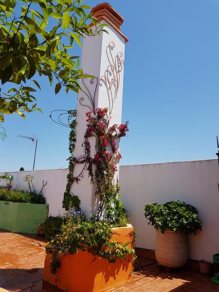 azuljardines.com_diseño-e-instalacion-jardines_Gerona-mantenimiento_11
