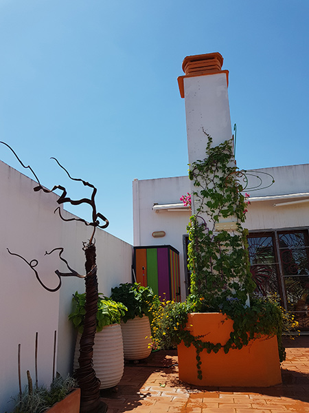 azuljardines.com_diseño-e-instalacion-jardines_Gerona-mantenimiento_14