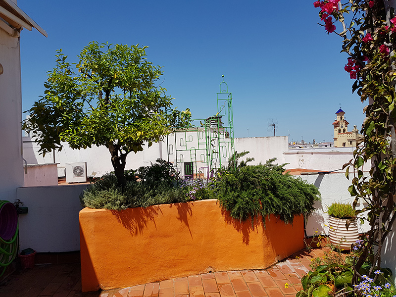 azuljardines.com_diseño-e-instalacion-jardines_Gerona-mantenimiento_16
