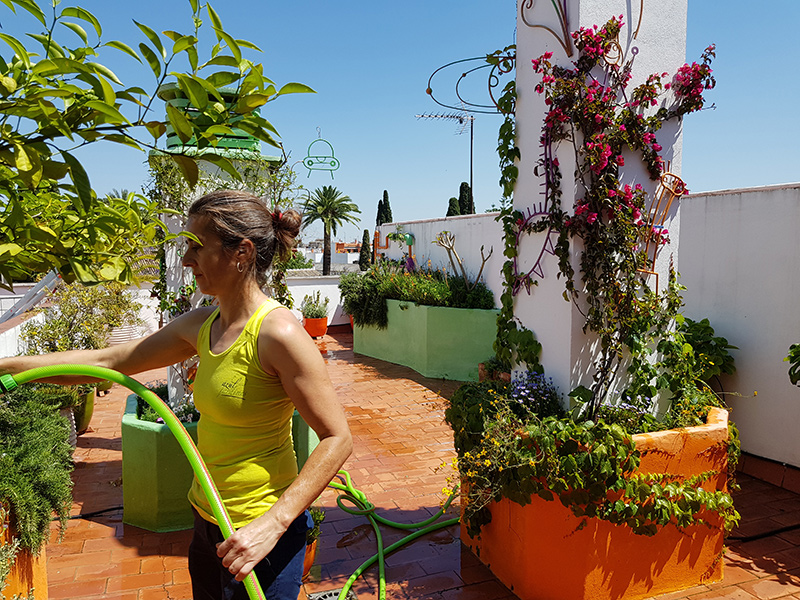 azuljardines.com_diseño-e-instalacion-jardines_Gerona-mantenimiento_18