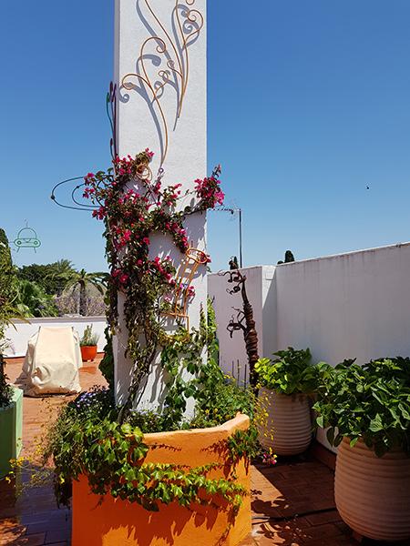 azuljardines.com_diseño-e-instalacion-jardines_Gerona-mantenimiento_3