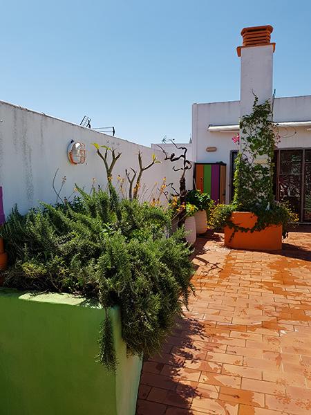 azuljardines.com_diseño-e-instalacion-jardines_Gerona-mantenimiento_6