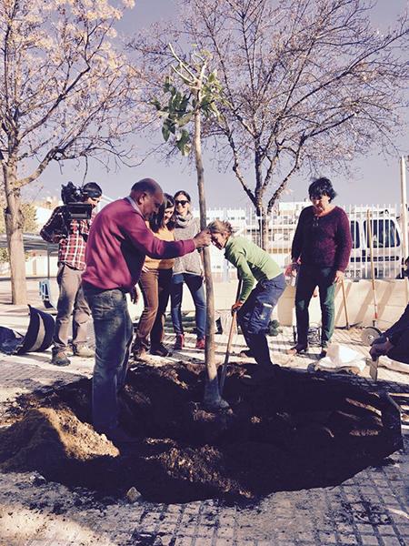 azuljardines.com_educacion-ambiental_CEIP-Velez-de-Guevara-6